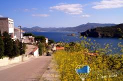 vente-maison-neuve-promotion-immobiliere-investissement-immobilier-colera-gerone-catalogne-costa-brava-Espagne-1